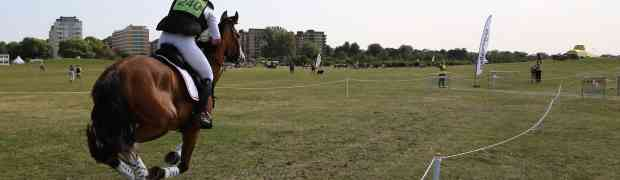 Horseshow on Ribban