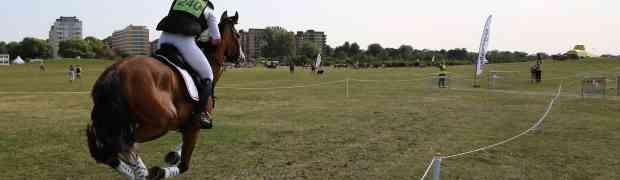 Horseshow on Ribban